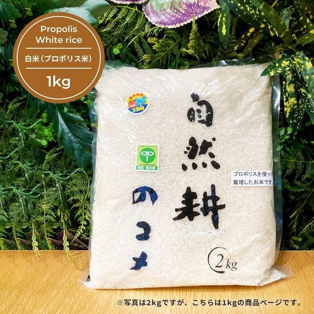 白米(プロポリス米) 1kg