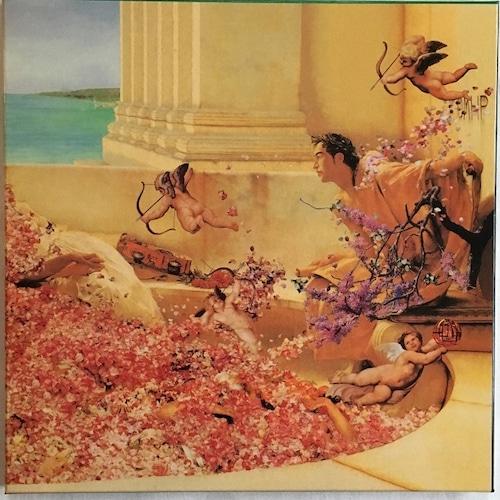 【LPx3 + 12inch・国内盤】布袋寅泰 / GUITARHYTHM Ⅱ