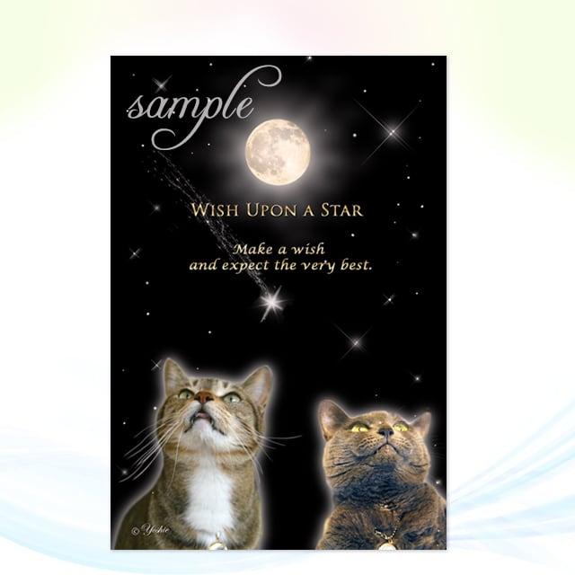 Wish Upon a Star/メッセージカードch.003