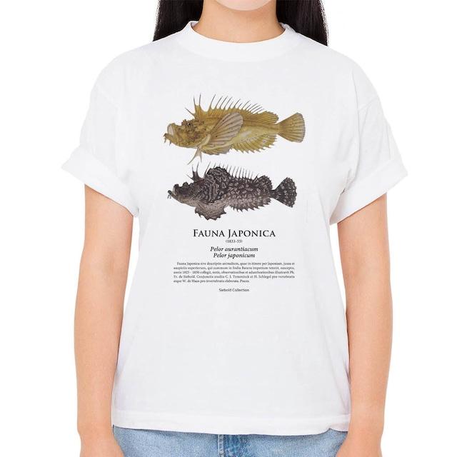 【オニオコゼ】シーボルトコレクション魚譜Tシャツ(高解像・昇華プリント)