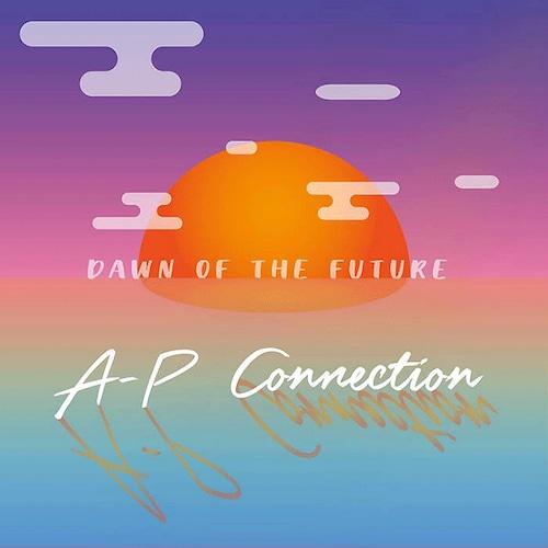【ラスト1/LP】A-P Connection - A-P Connection