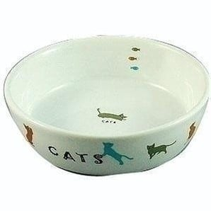 猫用陶器食器 遊ぶ猫
