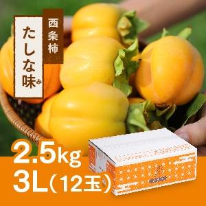 【予約 11月初旬頃より順次発送】西条柿 3L 12玉(2.5kg) たしな味