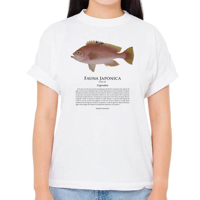 【アカイサキ】シーボルトコレクション魚譜Tシャツ(高解像・昇華プリント)