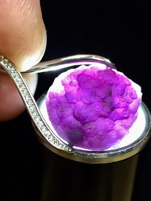 1) 紫ゴビアゲート「卑弥呼」メビウス・シルバーPT