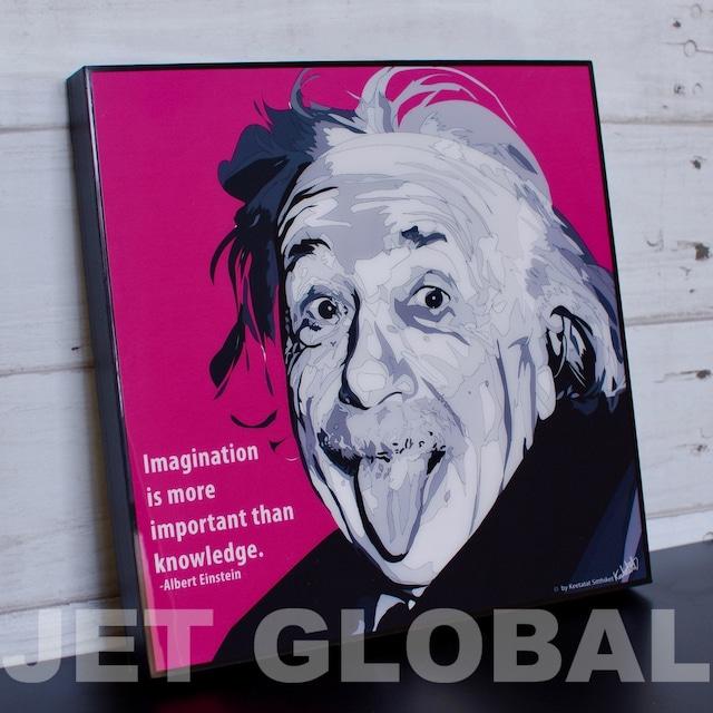 アインシュタイン/ ALBERT EINSTEIN : PINK / Lサイズ 52cm / PAPM_0007