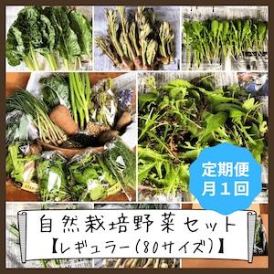 信州産 自然栽培『レギュラー定期便』月1回 80サイズ(農薬、肥料不使用)