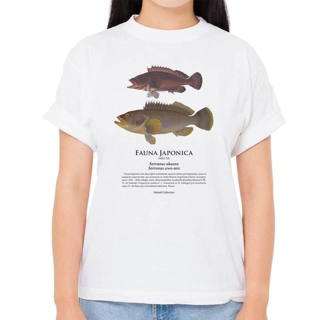 【キジハタ・アオハタ】シーボルトコレクション魚譜Tシャツ(高解像・昇華プリント)