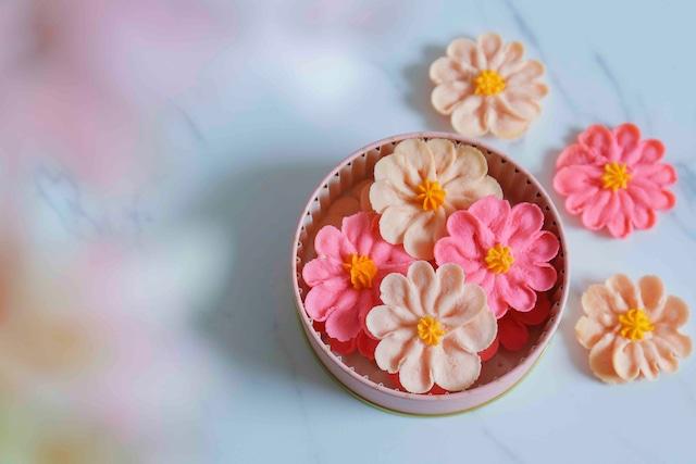 お花のぼうろ『コスモス&マーガレット2缶セット』~専用クリアケース付き