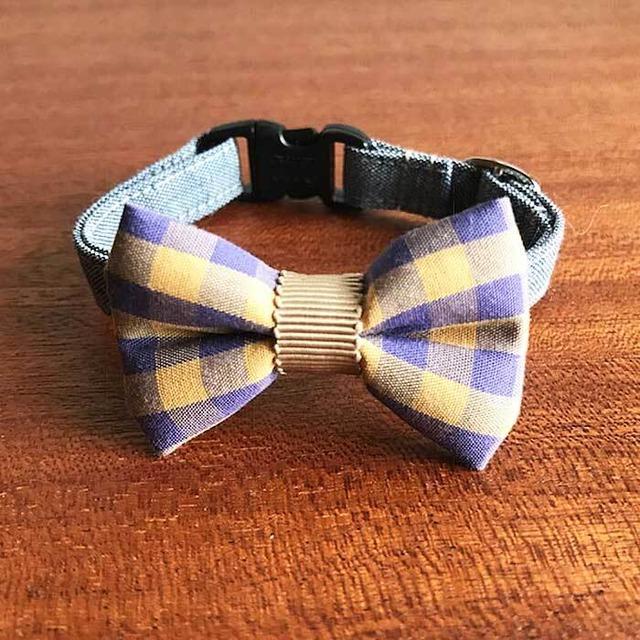 Cat ribbon collar 猫の首輪 リボン首輪 イエロー・パープル  チェックリボン&グレーベルト 【送料無料】