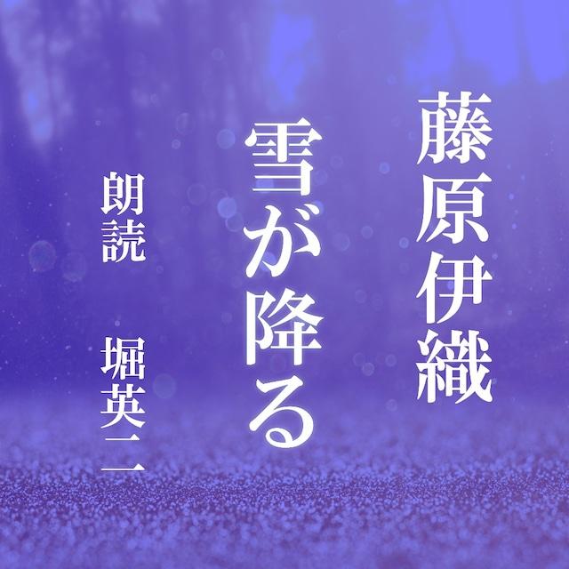 [ 朗読 CD ]雪が降る  [著者:藤原伊織]  [朗読:堀英二] 【CD2枚】 全文朗読 送料無料 オーディオブック AudioBook