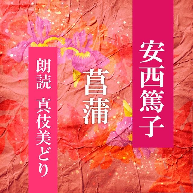 [ 朗読 CD ]菖蒲  [著者:安西篤子]  [朗読:真伎美どり] 【CD1枚】 全文朗読 送料無料 文豪 オーディオブック AudioBook