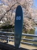 88SURFBOARDS  8'0''  Tri Fin D.Green/White  本州送料¥16,500込み価格