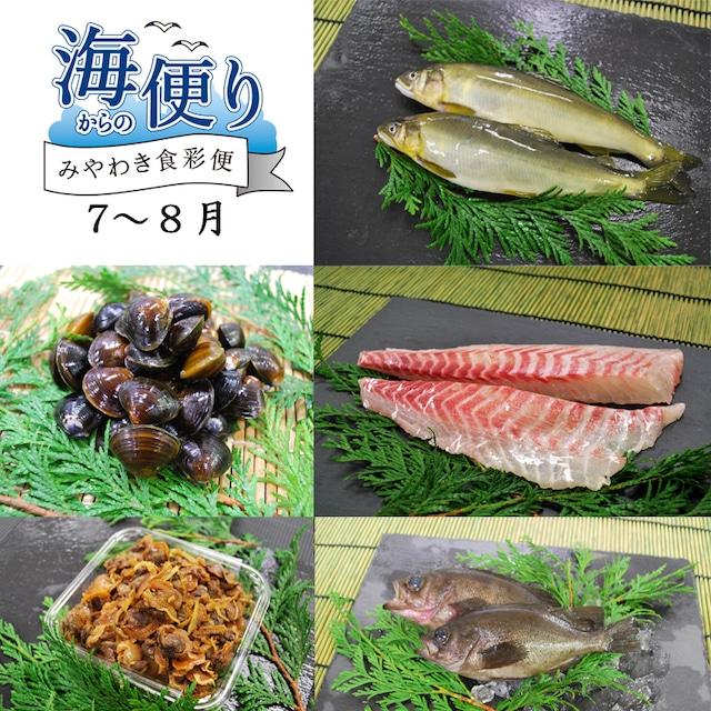 魚のみやわき《海からの便り》7〜8月分 【冷蔵商品】