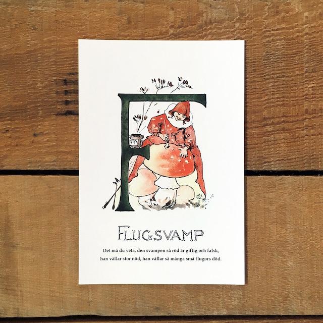 ポストカード「ベニテングダケ@FLUGSVAMP(王子たちの花文字 - 6)」