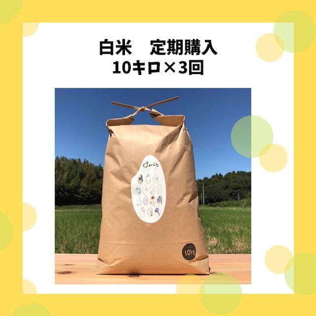 【ちょっぴりお得なお米の定期便】白米10キロ×3回