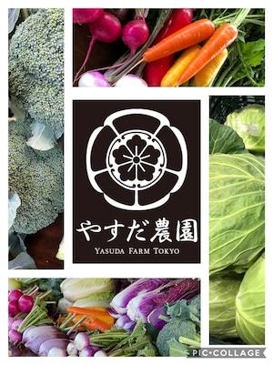 『冬色』 お任せ旬野菜セットL100サイズ