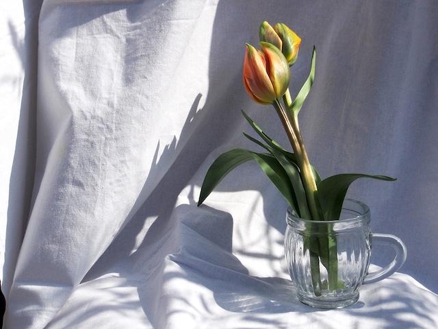 FLOWER POT フラワーポット 花瓶