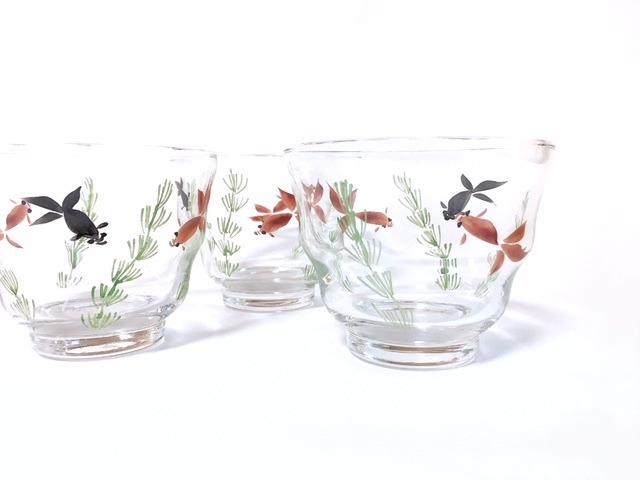 金魚 グラス
