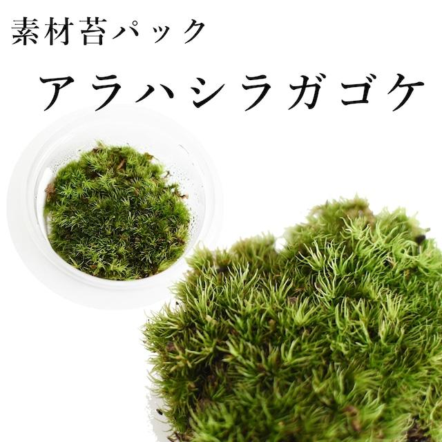 アラハシラガゴケ 苔テラリウム作製用素材苔