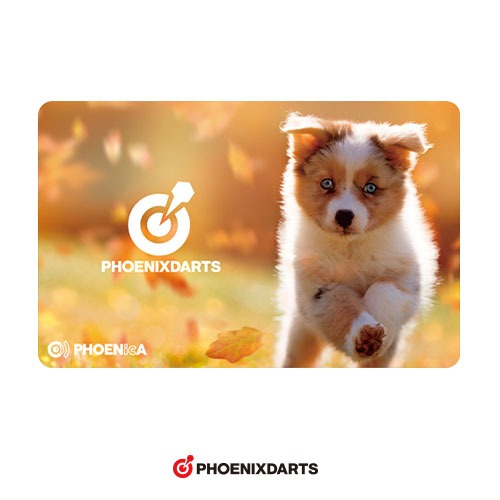 Phoenix Card [169]