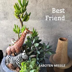Best Friend キリン&シマウマ