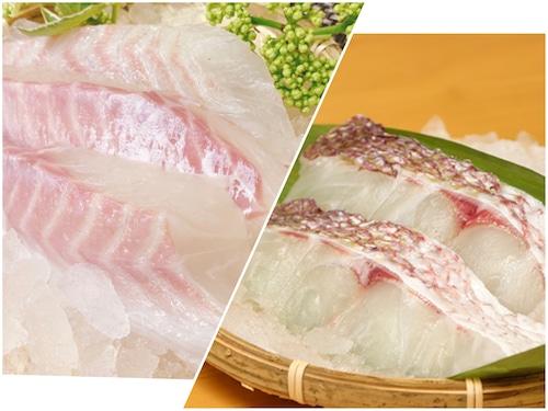 【人気No.1セット】天草産 真鯛の切り身(70g×10パック)&サク(3パック)《真空小分け+特殊冷凍™》