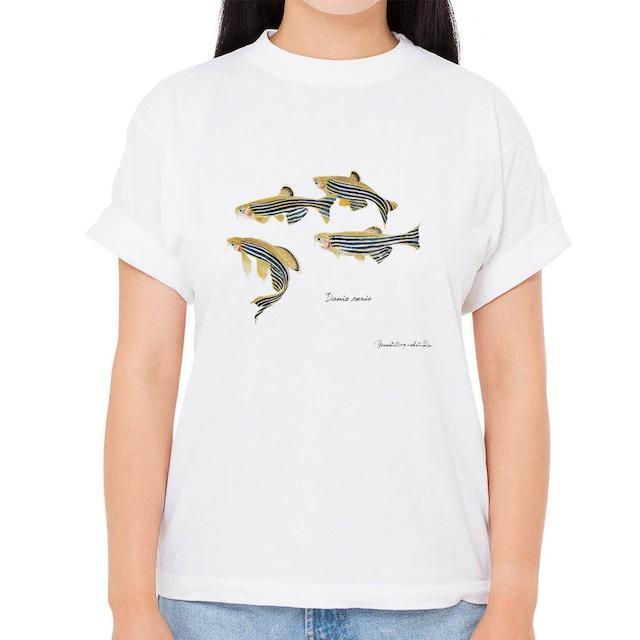 【ゼブラダニオ】長嶋祐成コレクション 魚の譜Tシャツ(高解像・昇華プリント)