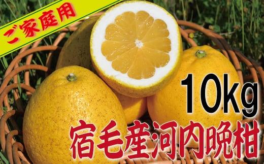 宿毛(すくも)産家庭用河内晩柑10kg
