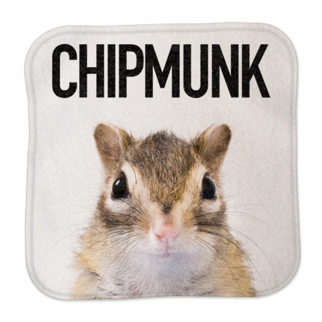 ミニハンカチタオル/CHIPMUNK①/MH-MO-001