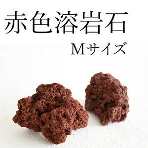 赤色溶岩石 Mサイズ(6〜9cm) 2個入り【レイアウト用・着生用】