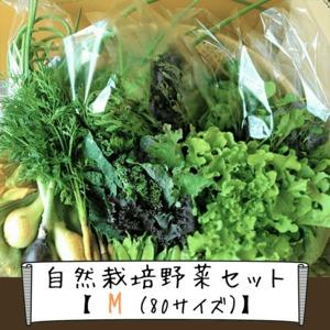 信州産 自然栽培『野菜セットM』80サイズ(農薬、肥料不使用)