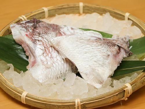 【ツウが選ぶ部位No.1】天草産 旨味ぎっしり!真鯛のカマ (1対×5パック)