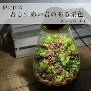 【現物販売・苔テラリウム】苔むす赤い岩のある景色−Mosslight-LED−2021.3.31#6