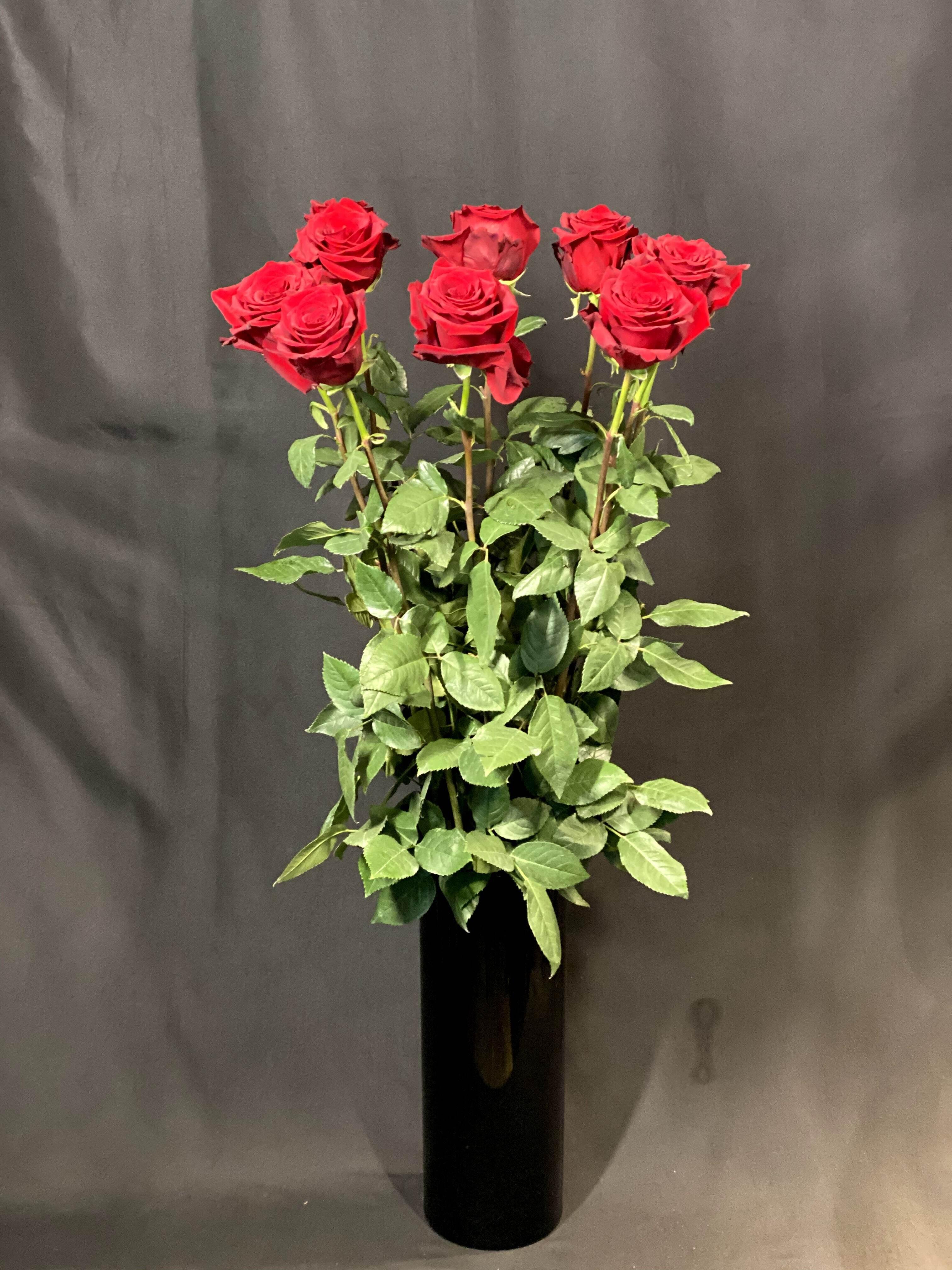 【希少品・当店限定】エクアドル産RED ROSE全長100cm 10本入