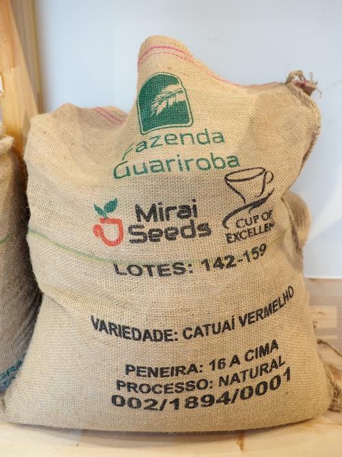 ブラジル グアリロバ農園 イエローカトゥアイ 210g