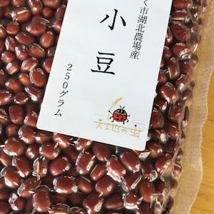 自然栽培 小豆!【250g】レターパックライト便【ぜんざいやお赤飯に♪】