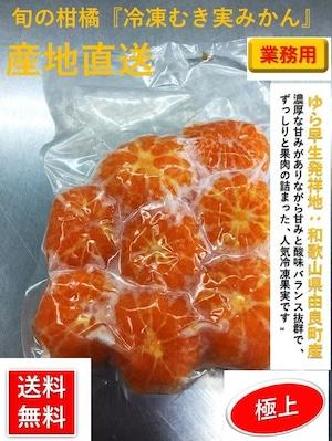 和歌山産 冷凍むき実みかん パック詰め 【1袋/500g】1箱/20袋入り【送料無料】
