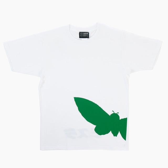 グラフィックTシャツ モスラ