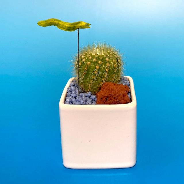 【受注生産品】ポット2種類 ウツボ サボテン su-01utsubo 観葉植物 夏 さぼてん カクタス インテリア グリーン ミニチュア かわいい 動物 フィギュア