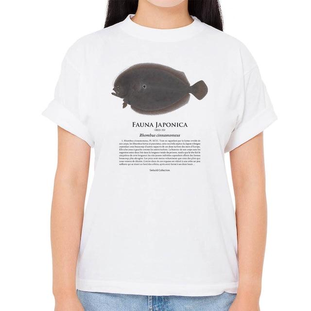 【ガンゾウビラメ】シーボルトコレクション魚譜Tシャツ(高解像・昇華プリント)