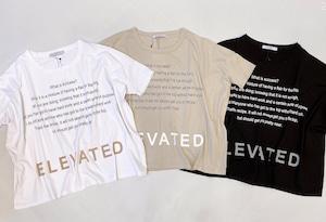 [SALE]AGNOST(アグノスト) インパクトロゴワイド t-shirt  2021夏物新作