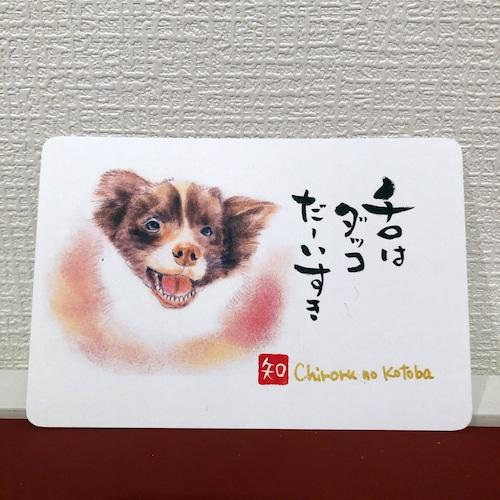 ポストカード 74(チロル)