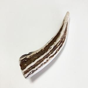 かみかみおもちゃ エゾシカのツノ 約11cm ふりかけパウダー付