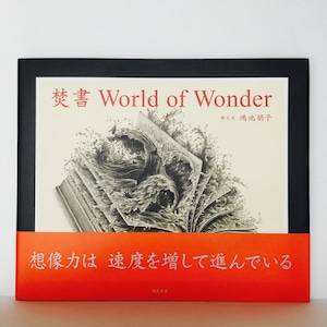 鴻池朋子『焚書 World of Wonder』