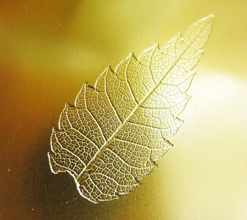 人肌 ─煌─(酒器)ゴールド