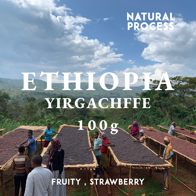 ETHIOPIA|YIRGACHEFFE -EDIDO- NATURAL|中煎り |コーヒー豆