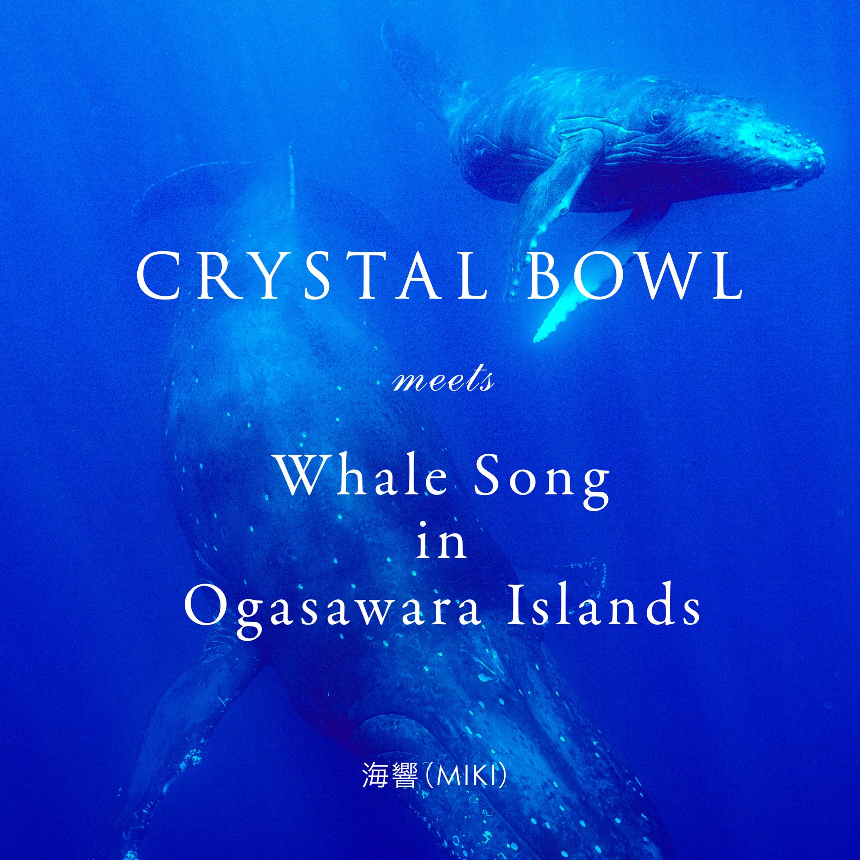 【オンラインストア限定/先行予約販売】 映画「愛の地球(ホシ)へⅡ」挿入曲/ CRYSTAL BOWL meets Whale Song in Ogasawara Islands