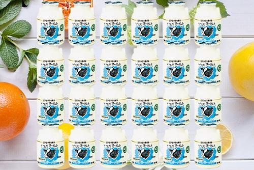 【配達日指定便★お得★】飲むヨーグルト「いちだヨーグルト」150ml×24本(F-61T)全6ヶ月