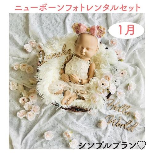シンプルプラン♡ニューボーンフォトレンタル女の子セット<1月ご出産予定のお客様枠>